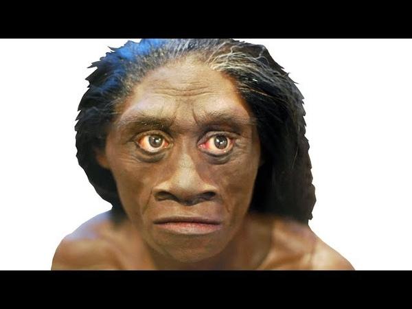 Поиск родственников человека флоресского, денисовцы, неандертальцы и пигмеи острова Флорес
