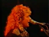 Robert Plant + Fairport Convention, Cropredy 1986