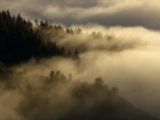 Брамс. Интермеццо Op.118 №6, d-moll, исп. Глен Гульд