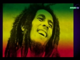 Bob Marley &amp The Wailers - Rat Race