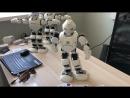 интерактивноеоборудование роботмода роботы аренда мероприятие евент robotmoda robots alpha ubtech robotmoda