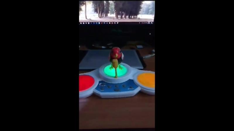 Интерактивная птичка DigiBird
