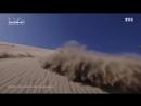 Surfeurs des sables