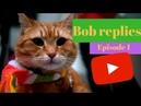 Bob Replies Ep 1