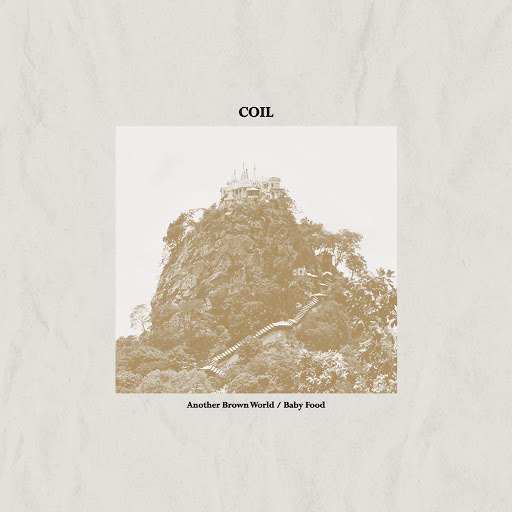 Coil альбом Another Brown World / Baby Food