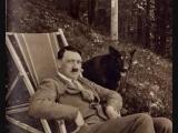 Hate Society - The Swastika Flies Again