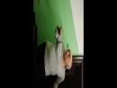Ded-pizdit-FullHD2