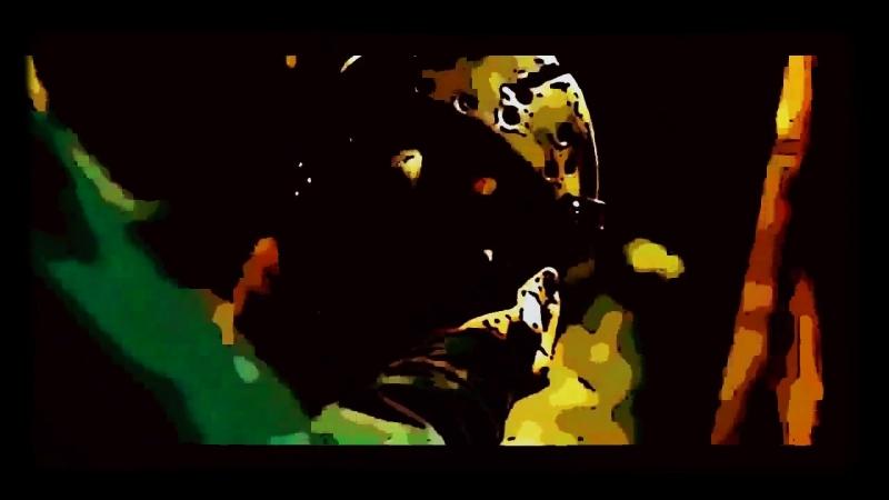 [aka DJ PSYCHONAFT] - H. R. F. T. B. (Mash-up Jason'core MIX) [jvtpg 150] (Video music HD) (2018)