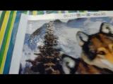 Алмазная мозаика Волки