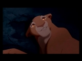 Король лев - Очередь в аптеке прикол.mp4