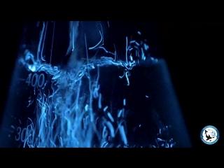 «Ночь в океанариуме». Светящиеся водоросли