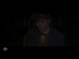 """Судьба одного. Будущее многих. """"Фантастические твари: Преступления Грин-де-Вальда"""" в кино с 15 ноября. #ФантастическиеТвари2"""