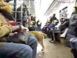 cekc v метро