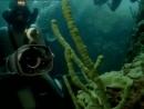 1997 Байкал В зазеркалье Байкала - Подводная одиссея команды Кусто