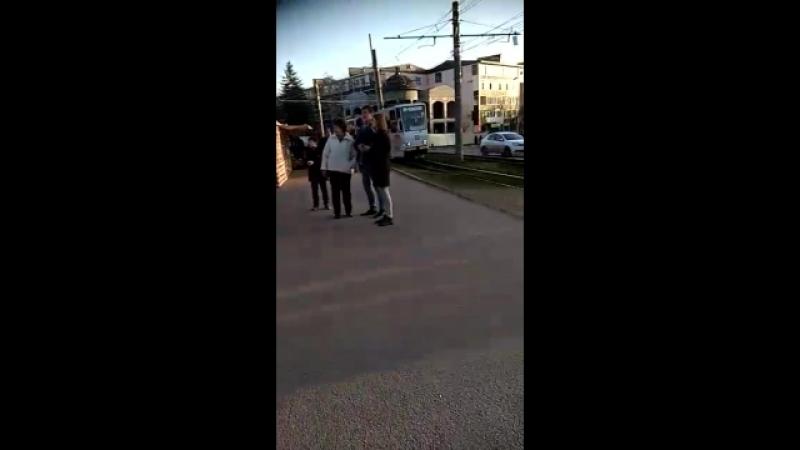 колобог,медовуха,обитень,квас и мьюзик)