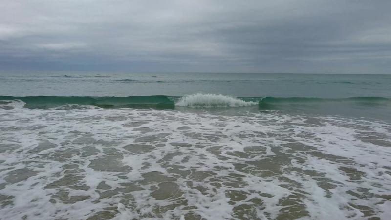 Тихий океан, Южный остров Новой Зеландии, Kaka point