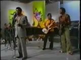T-Bone Walker &amp Chuck Berry --- --- Everyday I Have The Blues