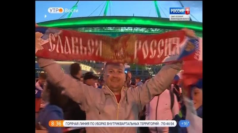 Вести - Санкт-Петербург.Утро от 20.06.2018 vestispb вестиспб vesti spbnews