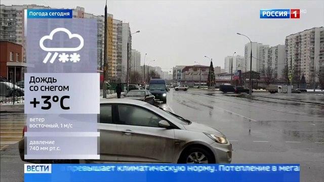 Вести-Москва • Весна в декабре: погода в столице на 6 градусов теплее нормы