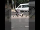 Бабушки переходят дорогу в неположенном месте