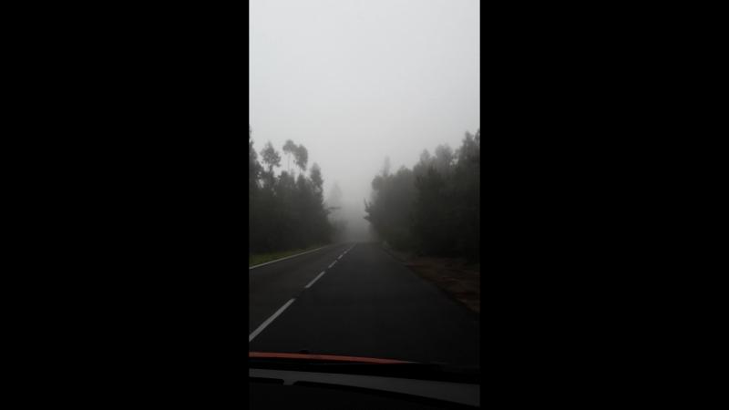 Эсперанса в тумане