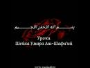 Шейх Умар Аш-Шафиий - В каждом повелении Аллаhа кроется мудрость!.mp4