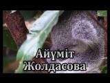 Айүміт Жолдасова Асем Бийжанова СҮЙДІМ СЕНІ ӘНІ