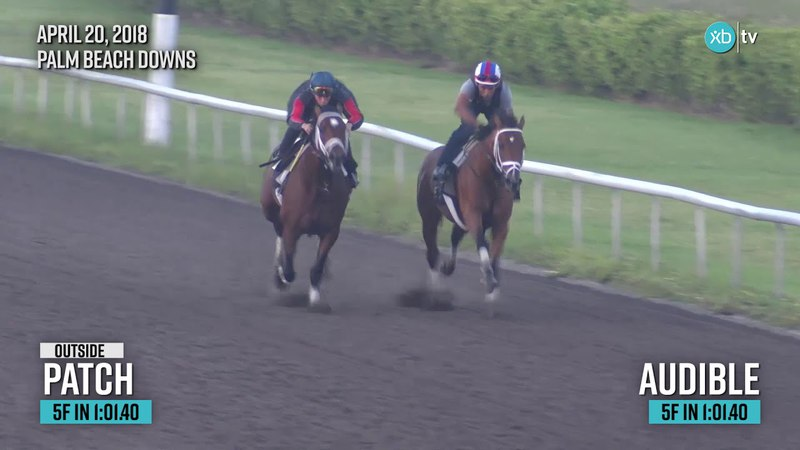 2018 Florida Derby winner Audible works at Palm Beach Downs ahead of the Kentucky Derby