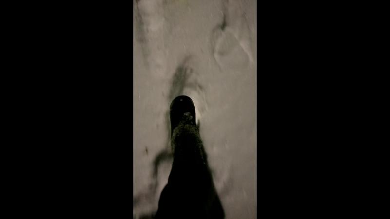 за 2 дня месячная норма снега в Москве
