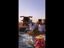 Отдыхают арабы