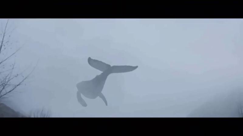 IVAN VALEEV - FLY ((2018) Vedeo Clip)