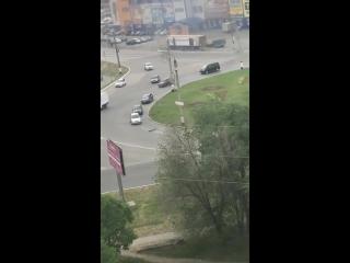 Утки на дороге в Сызрани (1)