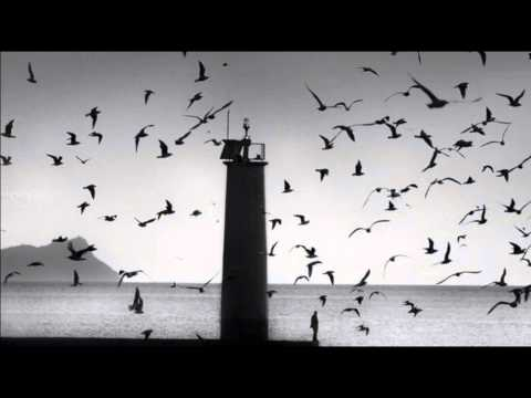 The Cinematic Orchestra - Arrival of The Birds Transformation