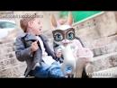 V-s.mobiС Днем Рождения Любимый Брат! Красивые поздравления музыкальные ZOOBE Муз Зайка.mp4