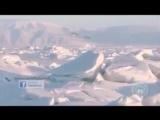 """Антарктида - самое запретное место на нашей """"Земле"""""""