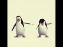 Крутой танец пингвинов и музыка))😀 весело, прикол Мадагаскар