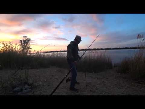My Season - Хороший Клев Рыбы Рыбалка с Берега на Реке Волге Ловля Голавля