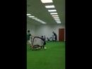 тренировка группы-мини 23 марта
