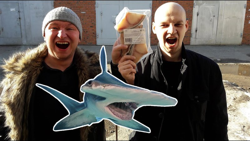 Пробуем акулу из магнита \\ Что лучше Сюрстрёмминг или Акула?