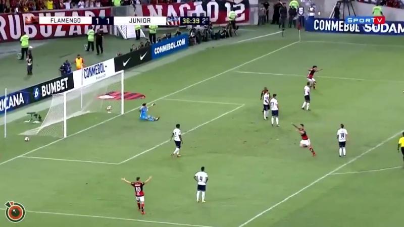 Сумасшедший гол из Южной Америки. Фелипе Визеу, Фламенго