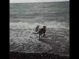 Тяпа, Таша, море