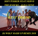 SOFI TUKKER FEAT.NERVO, THE KNOCKS - ALISA UENO - BEST FRIEND ( DJ WOLF MASH UP REMIX 2018 )
