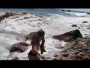 Девочка спасла акулу