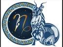 Знаки зодиака Козерог