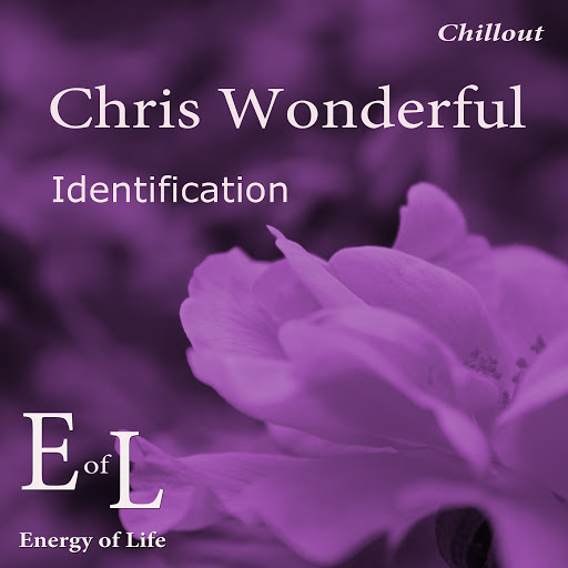 Chris Wonderful альбом Identification