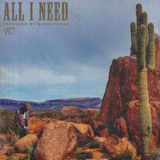 TC альбом All I Need