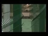 В обновленных скверах и парках Краснодара зафиксированы акты вандализма