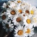 Жанара Уменова. Фото №3