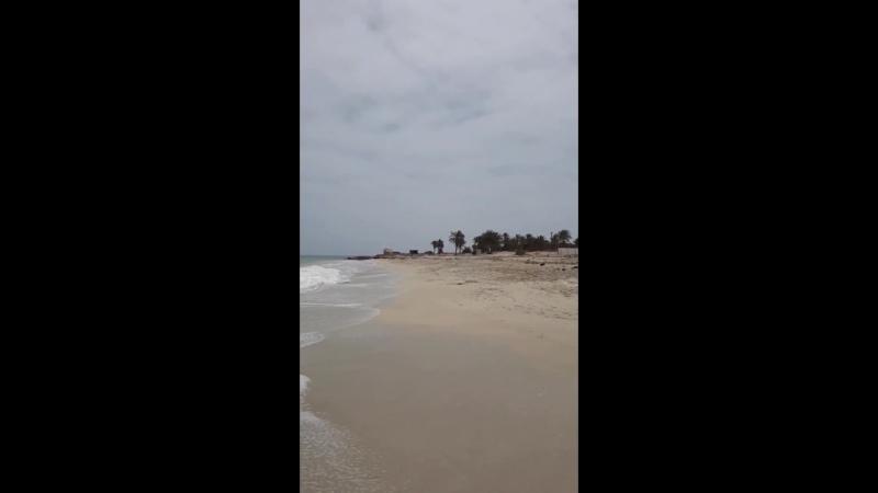 Тунис.остров Джерба.май 2018г