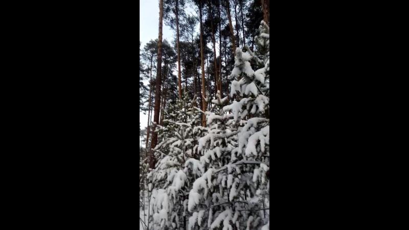 Стих на французском языке Моя внучка слушает меня внимательно ей видимо нравится мой французский Белый снег зима воскр смотреть онлайн без регистрации